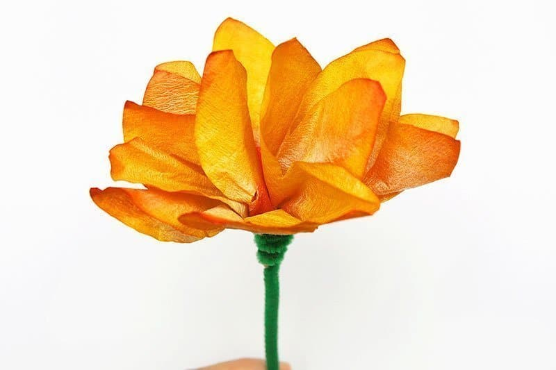 coffee filter paper flowers